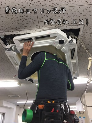 S__25878540.jpg